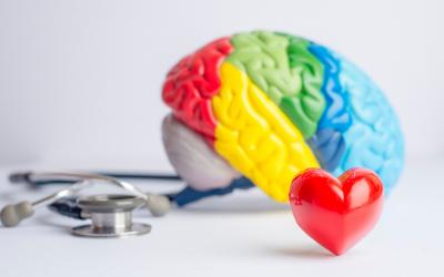 10 Datos sobre la Salud Mental